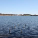 Smuk sø