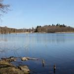 En ganske stille sø